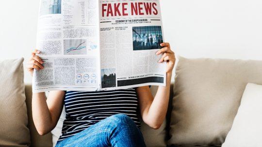 Fakes im Netz erkennen und Betrug vorbeugen